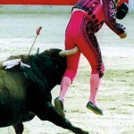 The Sport of Torero Goring