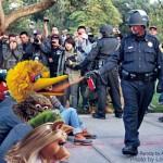 Big Bird Protests